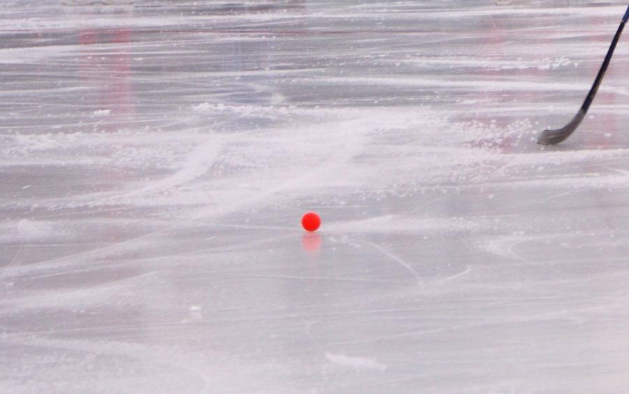 «Кузбасс» вышел в полуфинал чемпионата России по хоккею с мячом
