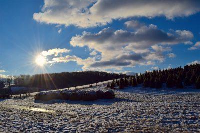 В МЧС России рассказали о возможном повышении зимней температуры к середине века