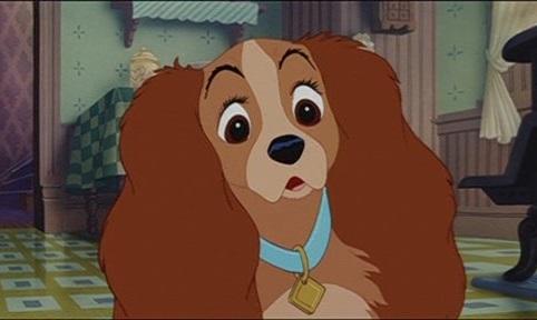 Диснеевскую собачью мелодраму «Леди ибродяга» превратят вигровой фильм санимацией
