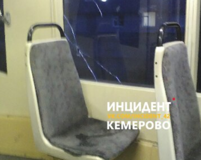 В Кемерове привлекли к ответственности мать детей, разбивших стекло в трамвае
