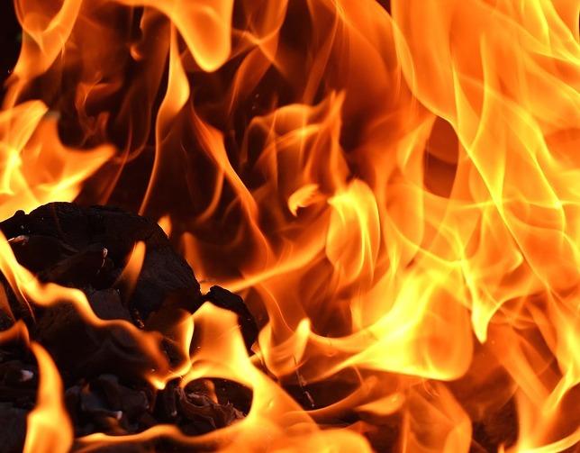 В Новосибирской области горел детский лагерь