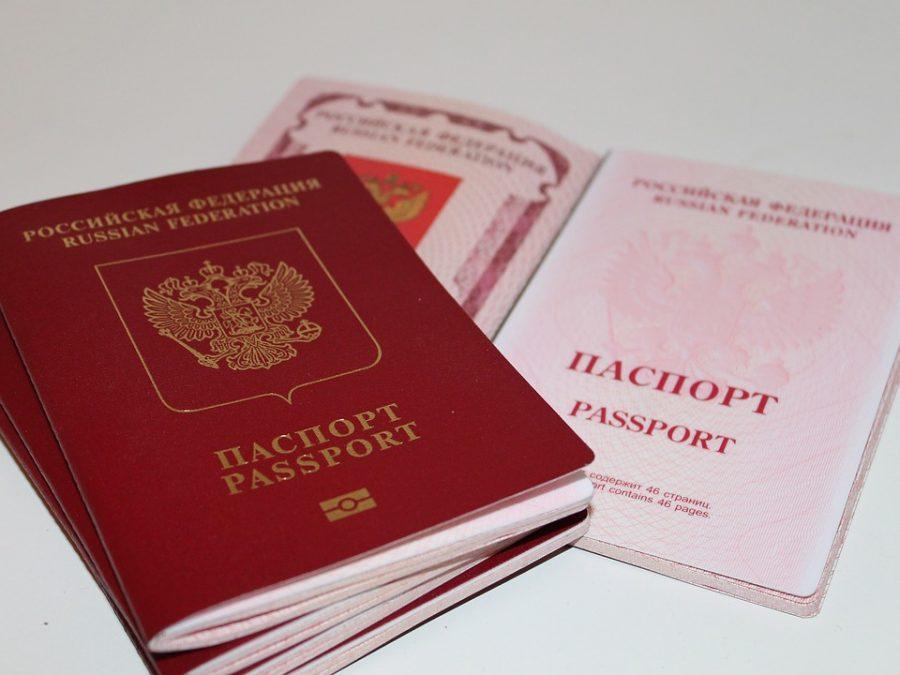 За год в России спрос на загранпаспорта вырос почти в 1,5 раза