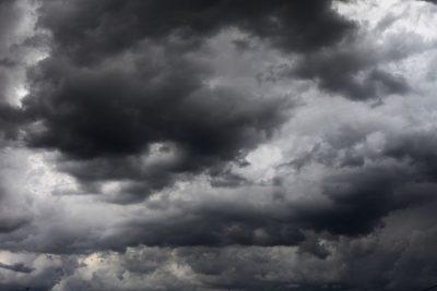 В Москве во время урагана погибла девочка