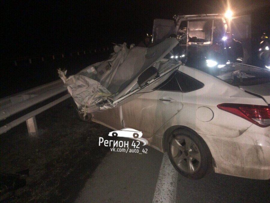 МВД: в Кузбассе водитель Hyundai наехал на лося и врезался в «Газель», погибли два человека
