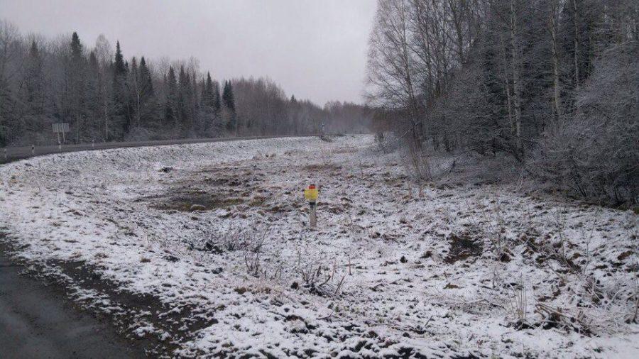 ВКемеровской области ожидаются снег ипорывистый ветер
