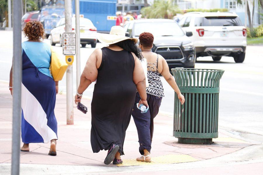 Минздрав: за пять лет количество страдающих ожирением россиян выросло на 45%