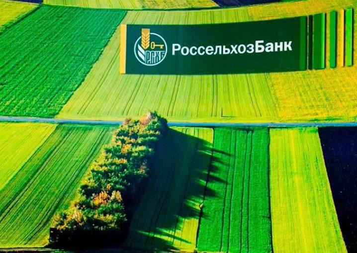 Россельхозбанк увеличит объём инвестиций в АПК Калининградской области