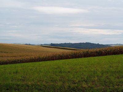 В Кузбассе ужесточили контроль над переводом земель из одной категории в другую