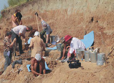 Международный палеонтологический центр планируют построить в Кузбассе