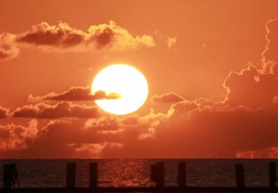 Учёные: к 2080 году число погибших от жары в ряде регионов увеличится почти в пять раз