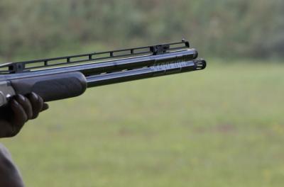 В Росгвардии предложили проверить россиян на умение обращаться с оружием