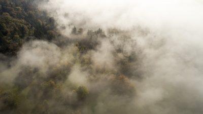 Туман и грозы: синоптики рассказали о погоде в начале следующей недели в Кузбассе
