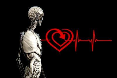 Кемеровчан приглашают бесплатно проверить работу сердца