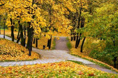 Последние выходные сентября в Кузбассе будут тёплыми
