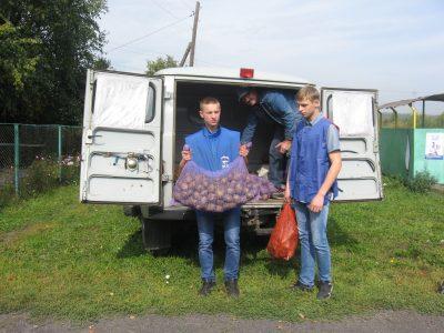В Кузбассе бесплатные овощные наборы получат 5 500 человек
