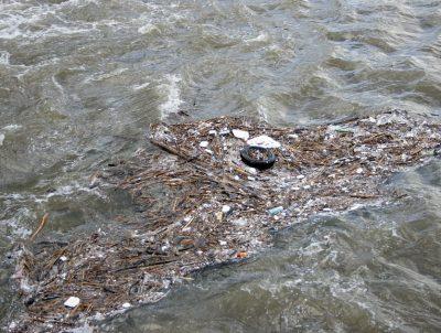 Прокуратура начала проверку по информации о загрязнении реки Кундат в Кузбассе