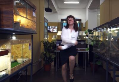 Кемеровский музей снял видео для флешмоба #skibidichallenge с Хабибом и динозавром