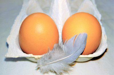 Кузбассовцы пожаловались в Россельхознадзор на опасные яйца