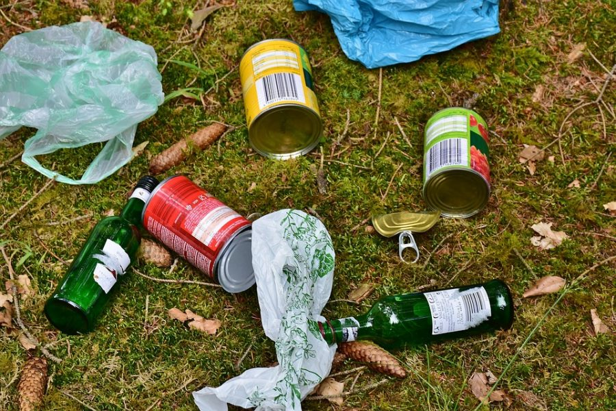 Кемеровский прокурор очистил город от мусора