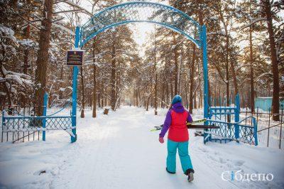 Кемеровский Сосновый бор сделают удобнее для автомобилистов