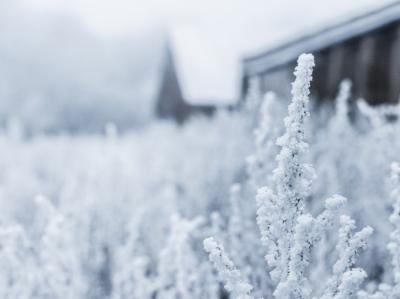Минус 33 и снегопад: какую погоду кузбассовцам ждать в понедельник