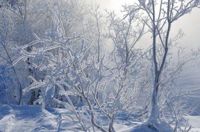 В выходные в Кузбассе резко похолодает: уточнённый прогноз погоды