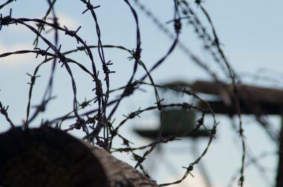 Фото: в Кузбассе мать пыталась передать осужденному сыну телефоны в джеме и в бисквитном рулете