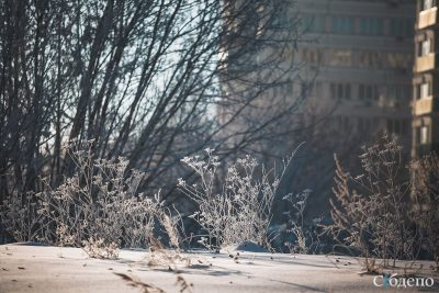 Почти без осадков и крепких морозов: погода на выходные в Кузбассе