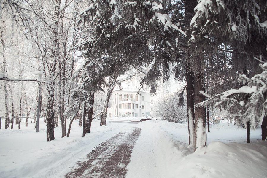 На предстоящей неделе в Кузбассе потеплеет